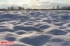Trong ánh nắng chiều, tuyết lung linh trông như những hạt ngọc.