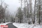 Снежный путь через зимний лес.