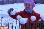 Старик украшает забор снежками в городском парке