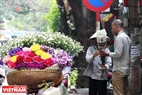 Foreign visitors love the flower very much. Photo: Hoang Quang Ha