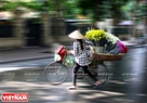 Bicycles with daisies add a touch of peace to Hanoi streets. Photo: Cong Dat