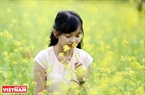 A lot of young people are attracted by the beauty of yellow mustard flowers. Photo: Quynh Anh/VNP