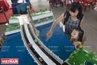 Mô hình cầu quay đối xứng của những sinh viên trường Đại học Giao thông Vận tải Tp. Hồ Chí Minh.