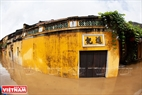 Tourists are interested in the new image of Hoi An