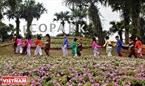Lũ trẻ náo nức vui hội hoa xuân và tham gia nhiều trò chơi dân gian.