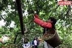 Mua A Tong, de l'équipe de compétition du village Na Tan, commune de Tân  Lâp, district de Môc Châu a dit