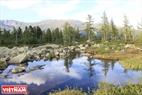 Những rặng cây thông soi bóng xuống mặt hồ tạo cảnh đẹp nên thơ.