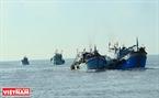 Đoàn thuyền của bà con ngư dân xã Bình Thắng thực hiện Lễ Nghinh Ông ở cửa biển Bình Đại.
