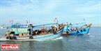 Các thuyền đi dự hội đua nhau ra cửa Bình Đại trong ngày Lễ Nghinh Ông.