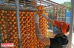 Công nhân tại một cơ sở chế biến treo trái hồng vào các dây có móc treo.