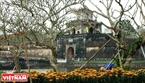 Tòa thành cổ trầm mặc trong ngày xuân.