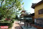 Bóng hoàng mai rực vàng bên Cửu đỉnh trong Thái Miếu.