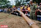 Cây song dài 40m được sử dụng để làm dây kéo trong Hội thi.