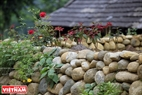 A beautiful corner of a garden paved by pebbles.