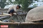 Sau mỗi chuyến đi biển về người dân chài Thọ Quang lại cẩn thận chăm chút sửa sang chiếc thúng như chăm chút cho người bạn thân của mình. Ảnh: Thanh Hòa