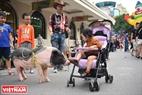 Không chỉ là nơi để xem trình diễn nghệ thuật mà đây còn là nơi để các em nhỏ có thể trải nghiệm, vui chơi cùng những con vật mà chỉ ở thôn quê mới có.