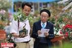"""Thành viên Ban giám khảo chấm điểm cho những cây hoa hồng Bonsai để chọn ra giải thưởng """"Nữ hoàng hoa hồng""""."""