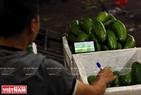 Một chủ sạp bán hoa quả vừa bán hàng vừa không quên theo dõi một trận đấu của World Cup 2018 trên chiếc điện thoại của mình. Ảnh: Công Đạt