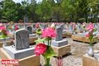 Những đoá sen hồng lung linh trên phần mộ của các anh hùng liệt sĩ đã ngã xuống vì đất nước. Ảnh: Thanh Hoà