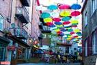 Sắc màu của những chiếc Ô được trang trí trên đường phố Quebec.