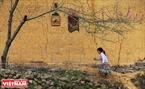 """""""នៅពេលជាក្មេងម្នាក់ ខ្ញុំចូលចិត្តមើលប្រតិទិនដែលមានរូបភាពពិសេសនៃតំបន់ភ្នំព្រៃ ដូចជាផ្ទះខ្ពស់ពីដី របងបានរៀបដោយថ្មនិងផ្កា peach រីកនៅក្បែរសំយាបផ្ទះ។  នៅពេលនោះខ្ញុំគិតថា រូបភាពនេះថតអំពីទីកន្លែងឆ្ងាយៗ នៅពិភពលោក... ទៅថ្ងៃមុខនេះ ខ្ញុំទើបដឹងថា បណ្តាទេសភាពនេះស្ថិតនៅ ខេត្ត ហាយ៉ាង (Ha Giang)""""។ អ្នកថតរូប ង្វៀន ហ៊ឹវថុង (Nguyen Huu Thong) បានចែករំលែក។"""