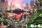 Hình ảnh núi Phú Sĩ được sắp xếp cùng các cành hoa anh đào làm cho du khách cảm nhận như mình đang ở đất nước Nhật Bản.