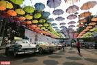Ngày hội xe cổ diễn ra tại Công viên Văn hóa Đầm Sen đã tạo nên hiệu ứng tốt cho người xem cả về chất lượng xe cho đến không gian trưng bày.