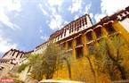 Cung điện Đỏ Potrang Marpo được xây trên ngọn Hồng Sơn là một trong những công trình kiến trúc cổ được bảo tồn nguyên vẹn nhất của Lhasa.