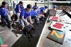Chó đua được đưa vào các khoang riêng có đánh số trước khi mở cửa xuất phát để đảm bảo tính công bằng. Ảnh: Công Đạt