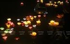 Phật tử cử hành nghi lễ thả hoa đăng cầu nguyện cho ông bà cha mẹ sức khỏe và trường thọ.