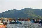 Hiện Thọ Quang được mệnh danh là cảng cá lớn nhất miền Trung với sức chứa gần 500 tàu, thuyền công suất lớn.