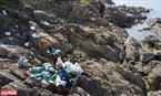 ダーナン市、ソンチャー半島のダーデンストーンビーチに、平穏と魅力的な美しさを取り戻すため、ビーチに捨てられた大量のプラスチックなどゴミを掃除する「ソンチャー半島のゴミ掃除」グループ。撮影:タット・ソン