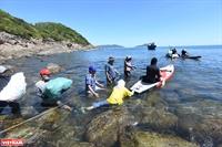 Сбор твёрдых отходов на пляже Даден