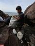 Các bạn trẻ chung tay dọn rác Bãi Đá Đen nhằm trả lại một bãi đá đẹp đẽ cho khu bảo tồn Sơn Trà.