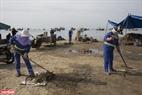 """Dự án """"Bống"""" (Goby) với slogan """"Feed Bống Plastic And Not Ocean!"""" (Hãy cho Bống ăn rác thải nhựa chứ không phải đại dương) do các bãi biển du lịch Đà Nẵng chủ trì với sự gợi ý và tham gia của các giáo viên người nước ngoài đang dạy học, sinh sống tại Đà Nẵng và sinh viên tình nguyện trên địa bàn."""
