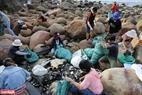 Các thành viên trong nhóm bao gồm sinh viên, thanh niên, người lớn tuổi, người nước ngoài đã cùng làm việc từ 8 giờ sáng đến 5 chiều thứ 7 mỗi tuần, từ việc dọn rác đến vận chuyển rác.