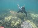 Lặn biển để nghiên cứu môi trường và dọn rác dưới lòng biển sâu bảo vệ sự phát triển của rạn san hô.