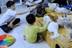Nguyễn Thanh Bình mong muốn có điều kiệu để có thể nhân rộng mô hình cứu hộ này để có thể cưu mang, cứu trợ được nhiều chú mèo hơn nữa và chuyển thông điệp yêu thương động vật tới nhiều người.