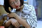 Hiện tại, Ngao's Home đang chăm sóc cho 21 chú mèo trong đó có những chú mèo từng bị thương tật nặng, bị bỏ rơi.