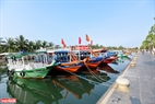 The boats are still without tourists. Photo: Thanh Hoa