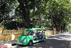 Almendrón en el Palacio del Rey de la isla, un conocido destino turístico en Con Dao. Foto: Tat Son / VNP