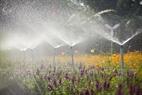 Hệ thống tưới nước tự động hiên theo các luống hoa.