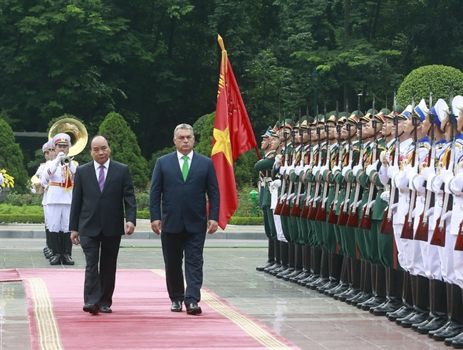 Vietnam, Hungary strengthen traditional friendship