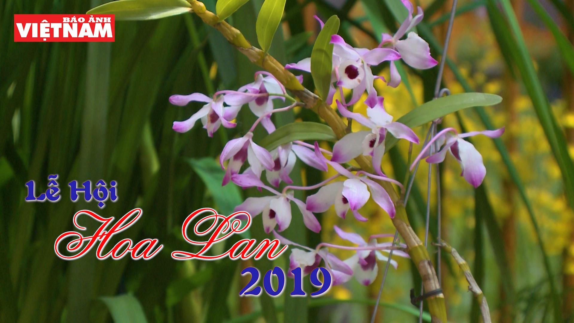 Lễ hội hoa lan 2019