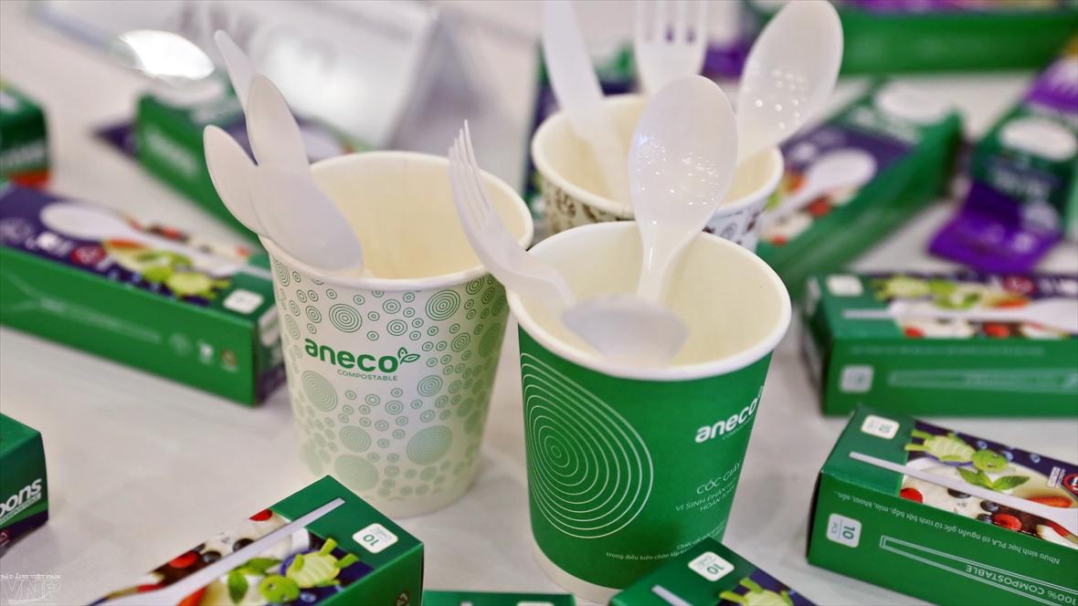 AnEco 친환경적인 제품 소비 프로젝트 추진