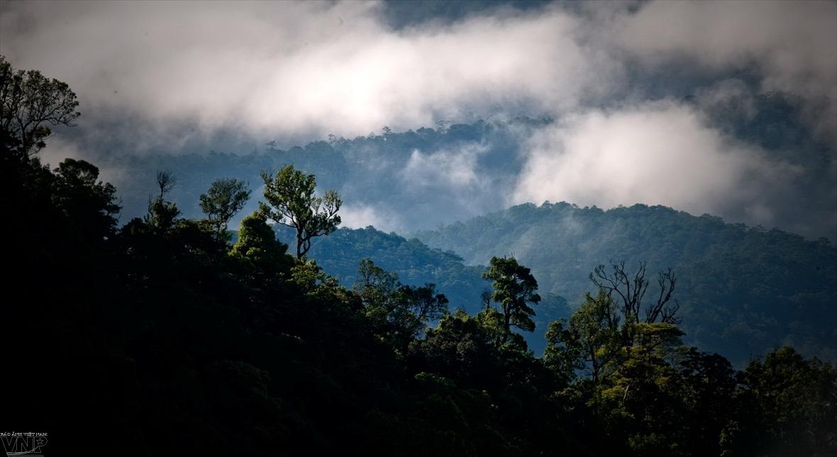 Parques patrimoniales de la Asean